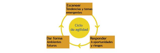 Ciclo de agilidad